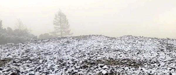 黑龙江这个地方迎2020秋后首场降雪!多地降雨、霜冻……