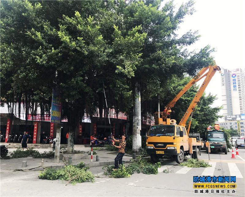 防城区组织人员对城区主干道的绿化带以及景观树进行修剪