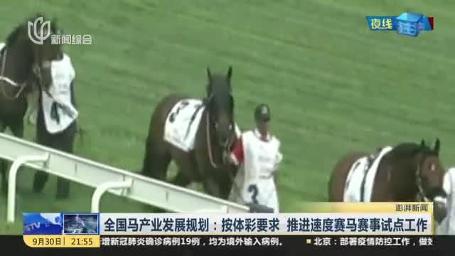 全国马产业发展规划:按体彩要求  推进速度赛马赛事试点工作