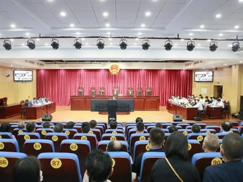 蜀山法院公开宣判林从兵等15人恶势力犯罪集团案