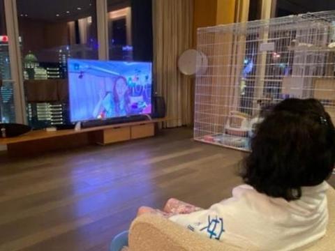 蔡少芬在上海的豪宅:坐在家里的客厅,就能直接看到东方明珠塔