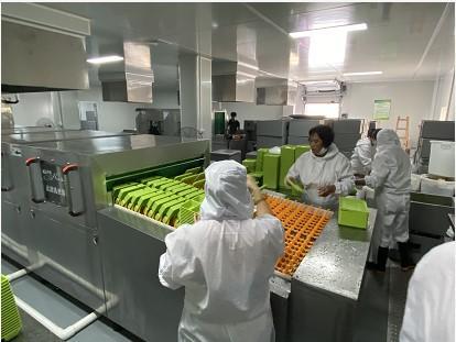 学生营养餐配送中心 中央厨房实施方案