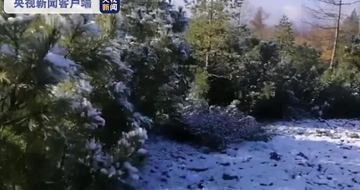 """下雪了!""""中国最冷小镇""""迎来2020年首场降雪"""