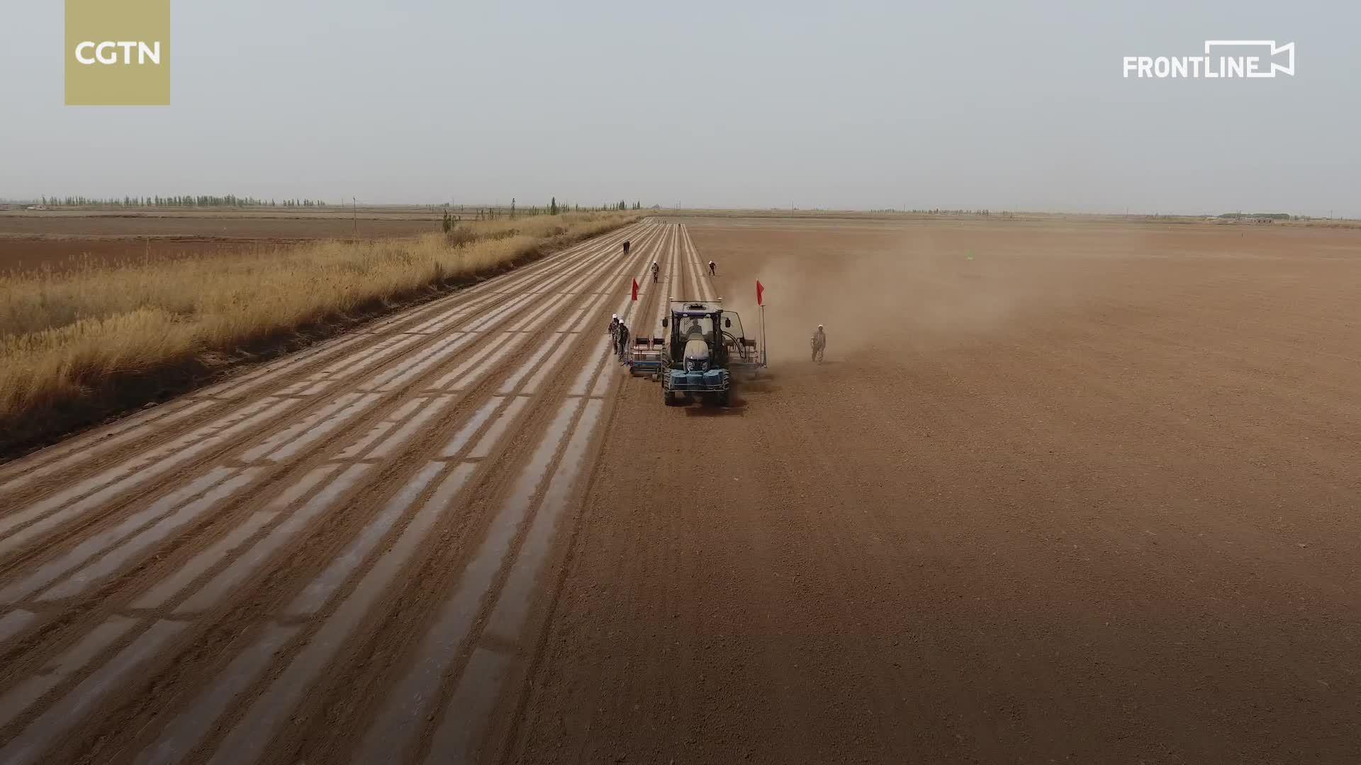 雄起~北斗 卫星导航系统助力新疆农业