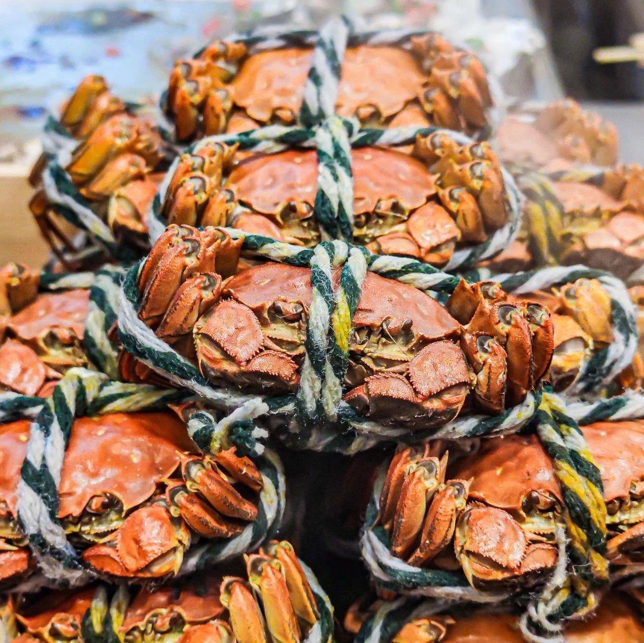 【外白渡桥】【立减70元】上海大厦大闸蟹自助开售啦!畅吃多款蟹宴料理、70+种美食任、选、任、吃!