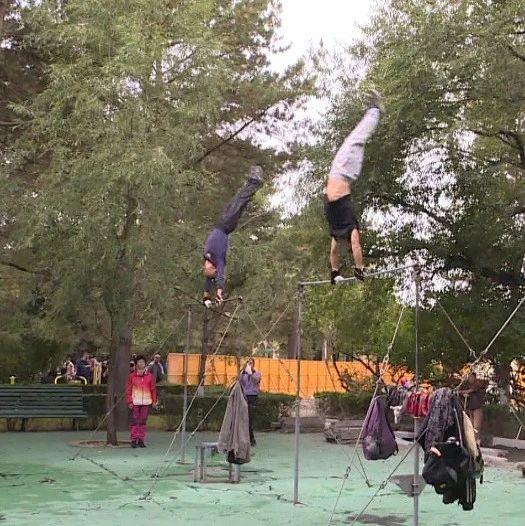哈尔滨 这些单杠高手,平均年龄你都猜不到……