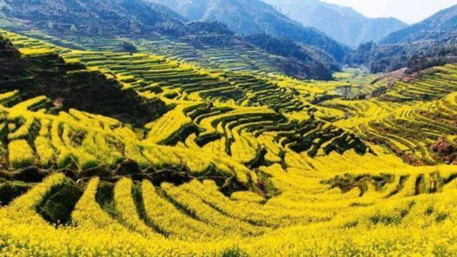 """江西有个小县城 GDP值240亿 叫""""百货回归市场"""""""