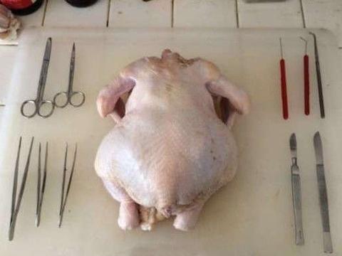 男子用手术刀把鸡的骨头全部剃光,做了一只无骨鸡,女友完全看懵