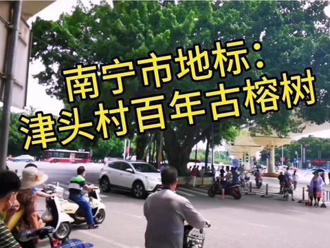 南宁市地标:津头村两棵二百年古榕树