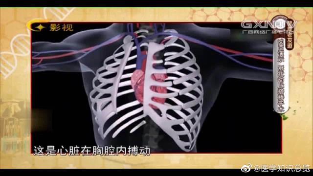 动画演示:冠心病冠状动脉搭桥手术如何进行