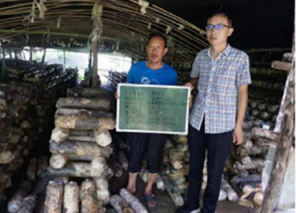 西峡县军马河镇:贫困户工业保险成长工业保险