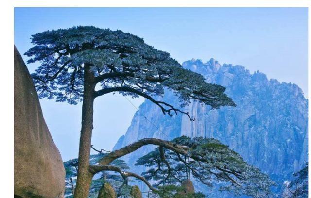"""黄山有一个被""""冷落""""的古镇 风景超级美"""