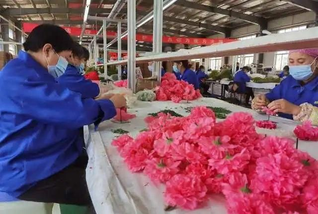 隆德:跳出传统思路办产业 崛起小山区县农产品加工业
