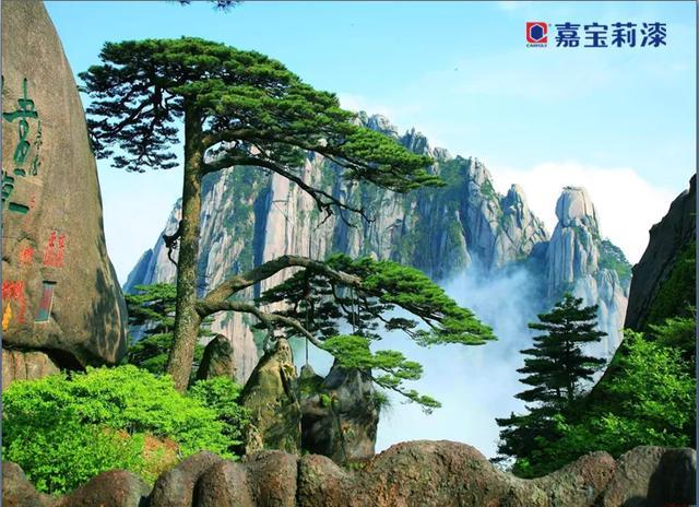 攀登黄山——2019南昌车皮优秀会员省外两日游