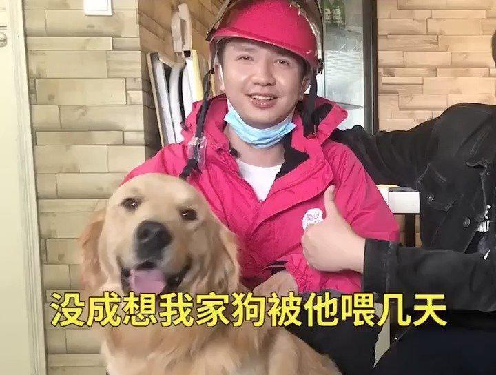 住户拜托配送员帮忙喂狗 狗子胖了十斤