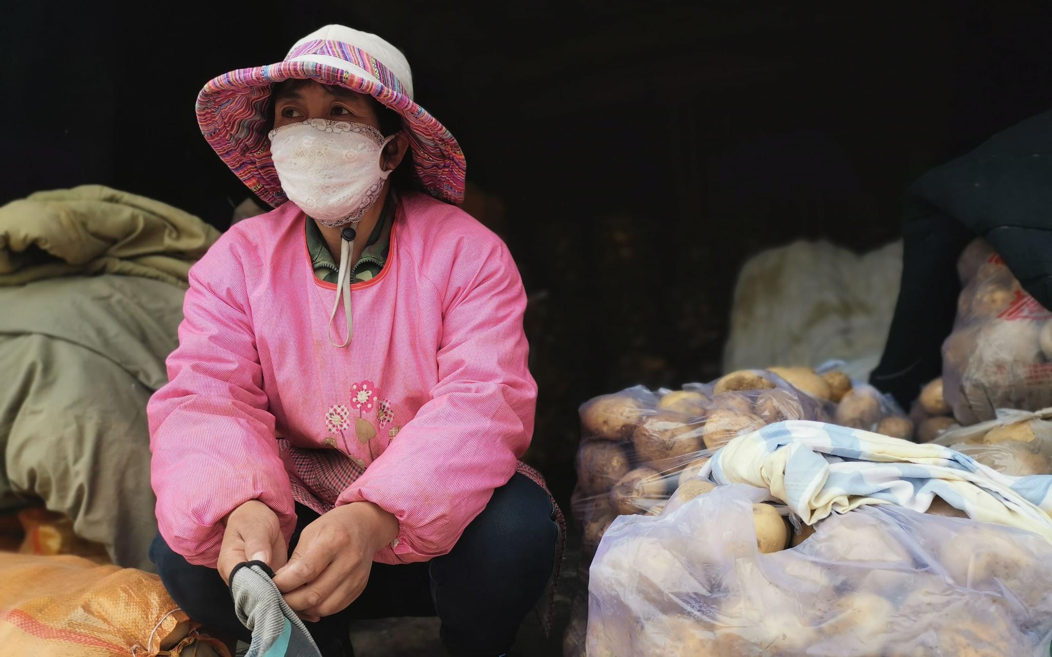 """保障粮食安全 中国土豆""""主食化""""之路仍有四大难关待过图片"""
