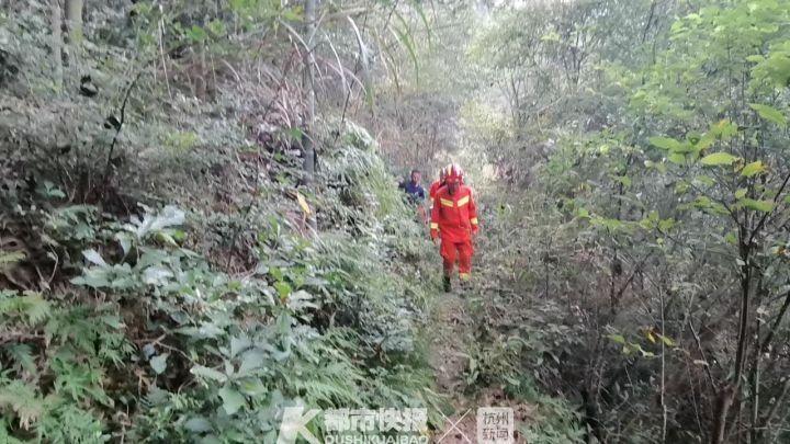 奉化溪口景区 一群50的朋友被黄蜂袭击 有人滑倒滚下山坡