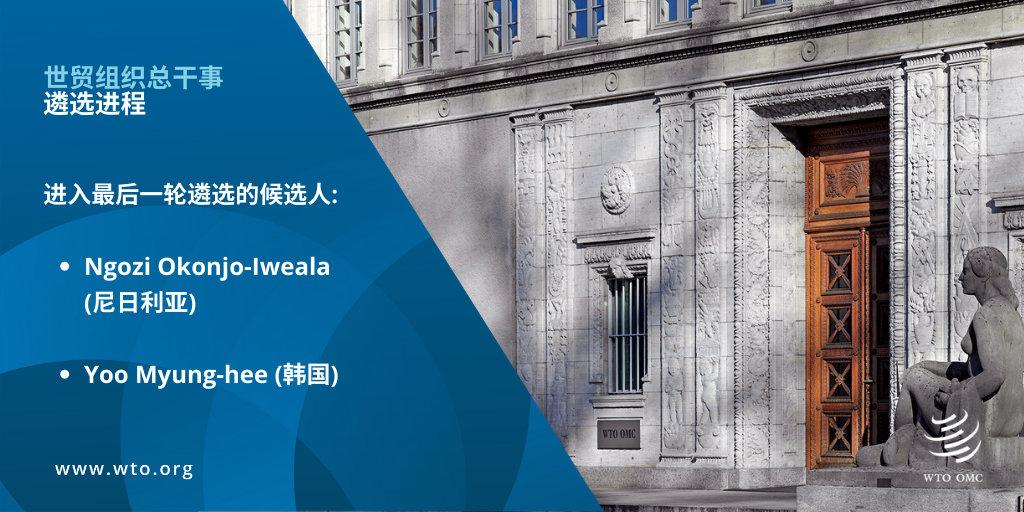 WTO将迎首位女总干事,这两位候选人各有千秋图片