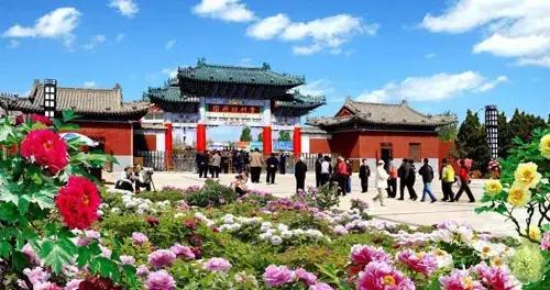 曹州牡丹园将移交菏泽文旅集团运营管理