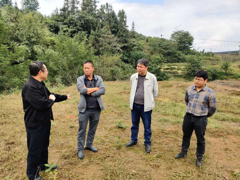 黔西南民政局组织非法建葬(放)设施 规划