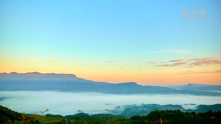 世界那么大丨重庆金佛山云海奇观