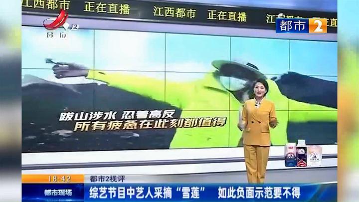 江西热榜:嘉宾被指采摘水母雪兔子涉事节目发致歉声明