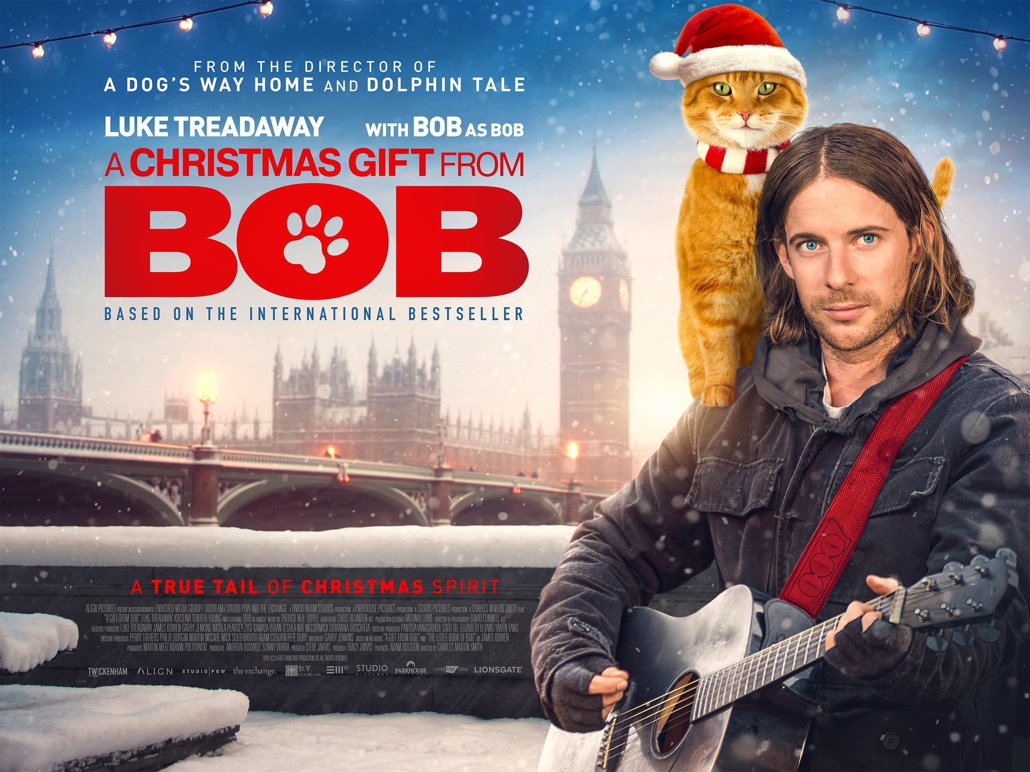 """流浪猫鲍勃""""遗作""""《鲍勃的圣诞礼物》英国11月6日上映图片"""