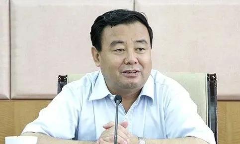 史文清辞去江西省人大代表职务 今年9月已被查图片