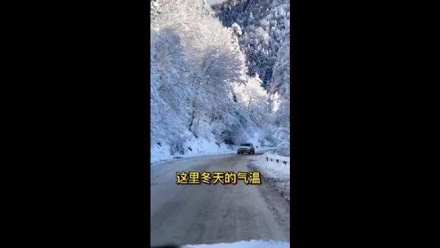 俄罗斯小镇奥伊米亚康,冬天气温可以达到零下七十多度?!