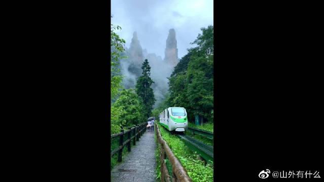 开往大氧吧森林的小火车,也是森林里一道靓丽的风景线!