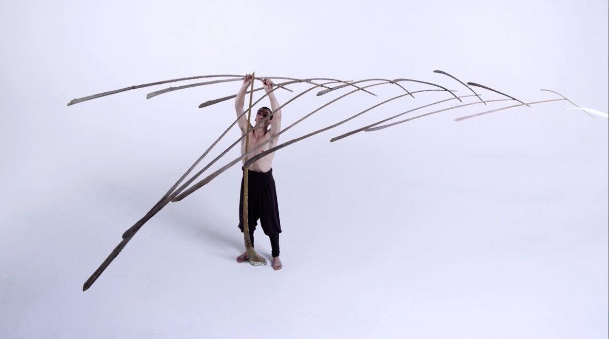 内心多么平静 才能用一根羽毛撑起一树枝干 Tobias Hutzler