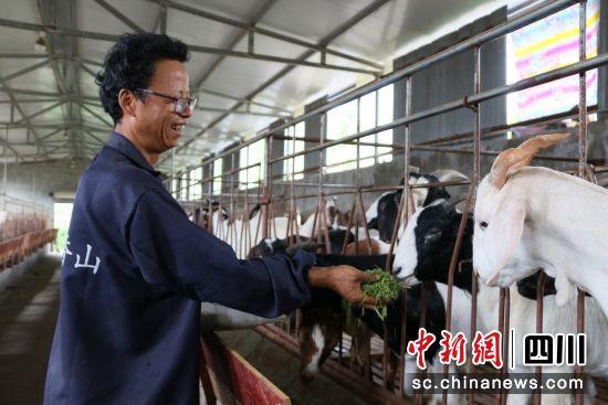 西充:小农场每年消化800吨秸秆