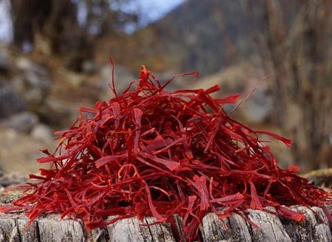 农民眼里神秘的药材藏红花,能培元固本,还可活血化瘀消炎止痛