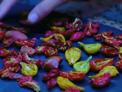 李子柒熬制了一锅番茄汁,清水煮几根面条,混着汤汁相当好吃