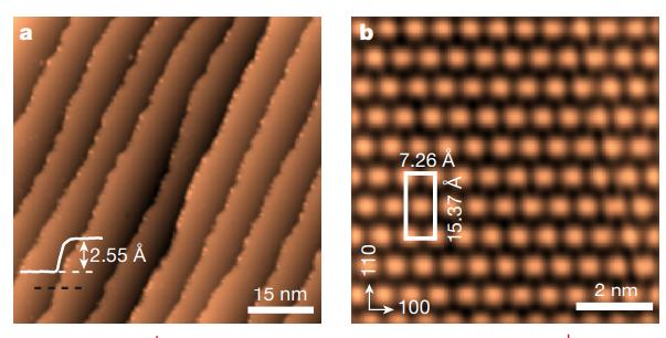 扫描隧道显微镜下经甲酸根处理的铜箔