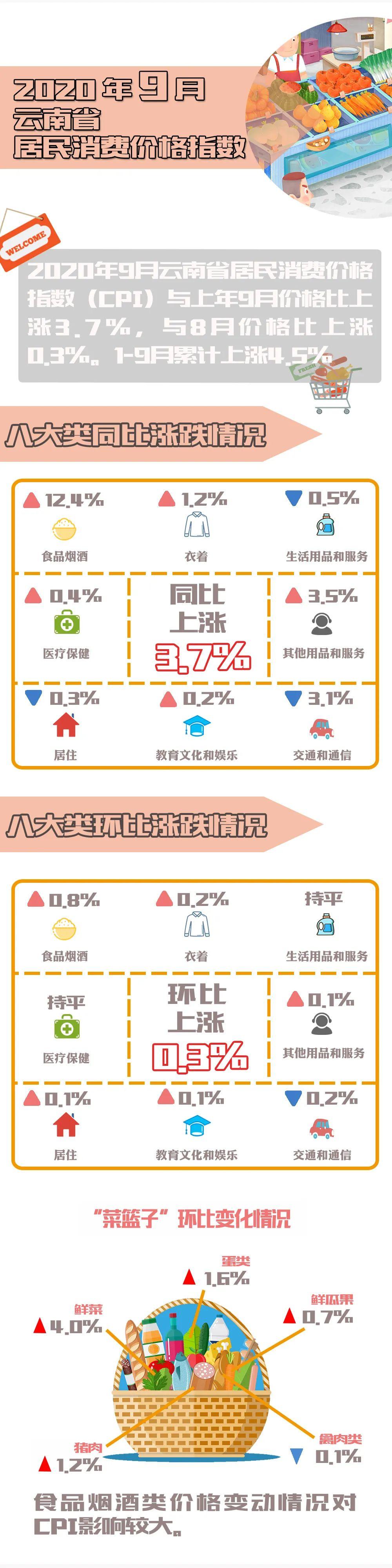 【民生】鲜菜价格较8月上涨4%!9月云南主要民生指标公布图片