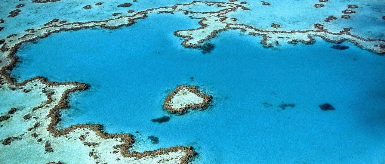 环状珊瑚礁究竟是怎样形成的?这回连达尔文可能也错了