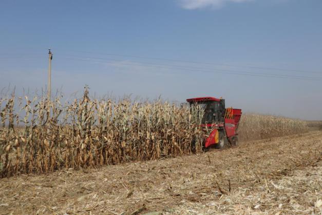 种植、养殖带来幸福生活——广发银行太原分行光裕堡村驻村工作队