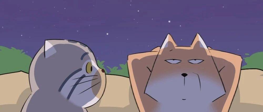 """""""嘿!你看到昨晚的星空了吗?"""""""