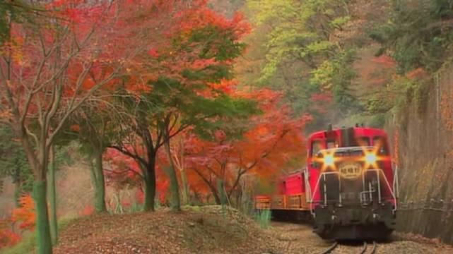 十年前的岚山小火车秋景 偶尔看到一支十年前的影片