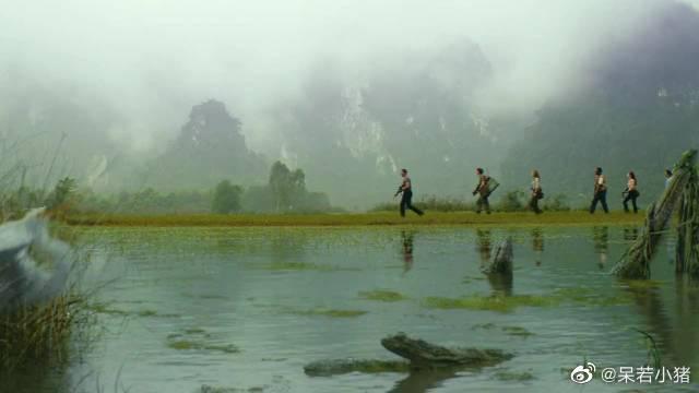 人类误闯神秘岛屿,怎料谁处可见巨型生物,金刚骷髅岛!