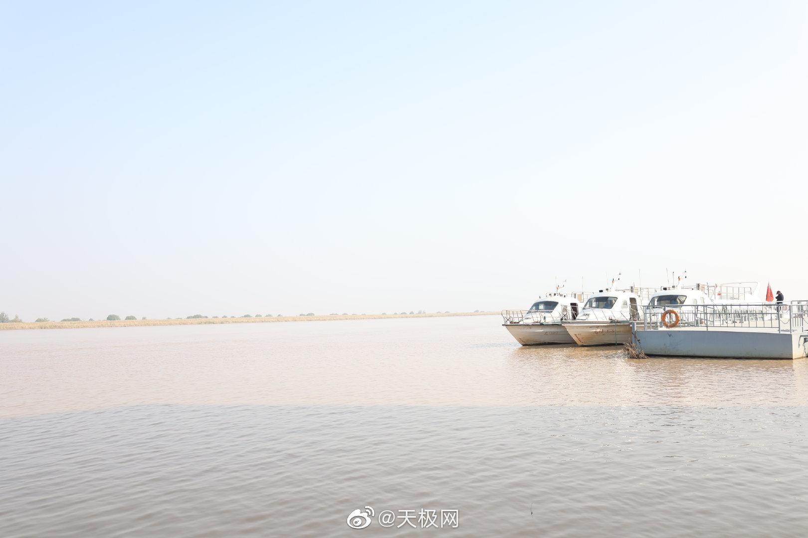 来到山东东营,就一定不能错过黄河入海口生态湿地公园