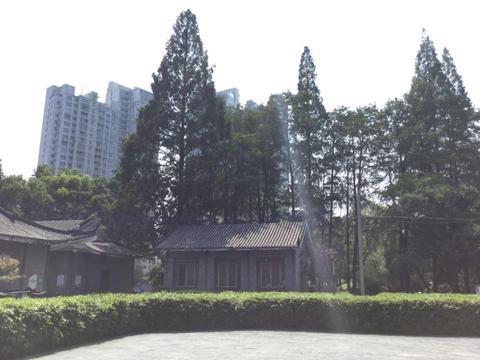 闲暇时光带着家人去汉阳莲花湖公园玩