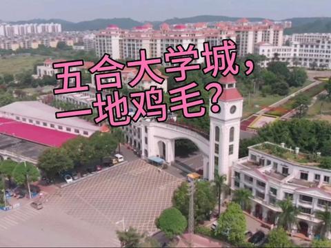 当年香饽饽的南宁仙湖五合大学城,今日缘何一地鸡毛?