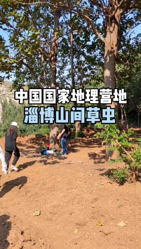 中国国家地理营地:淄博山间草虫
