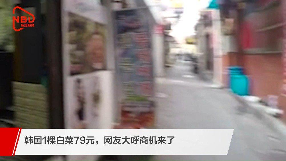 韩国1棵白菜79元网友大呼商机来了!