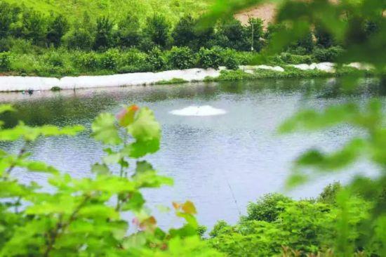 【趣读合肥】青山绿水人文景 合肥岭上好风光