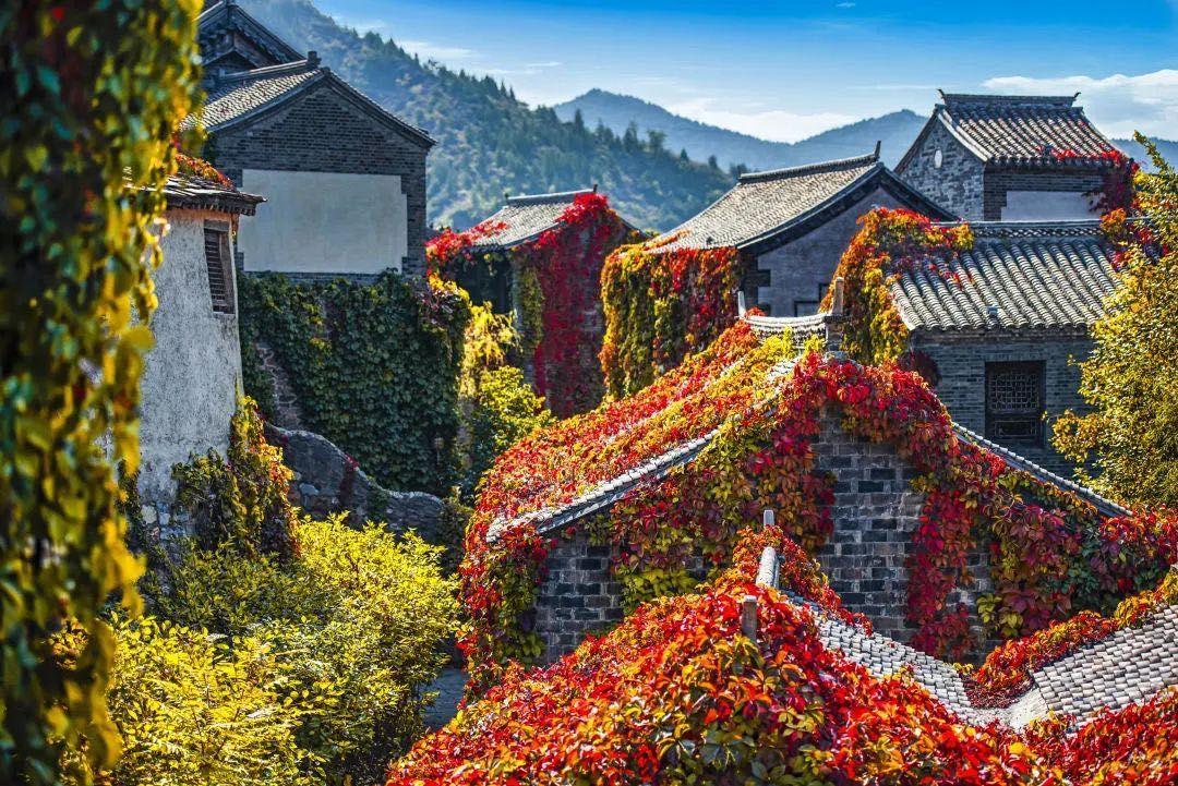 穿汉服、赏红叶、逛古街、观秋景,京郊古北水镇的国风新玩法图片