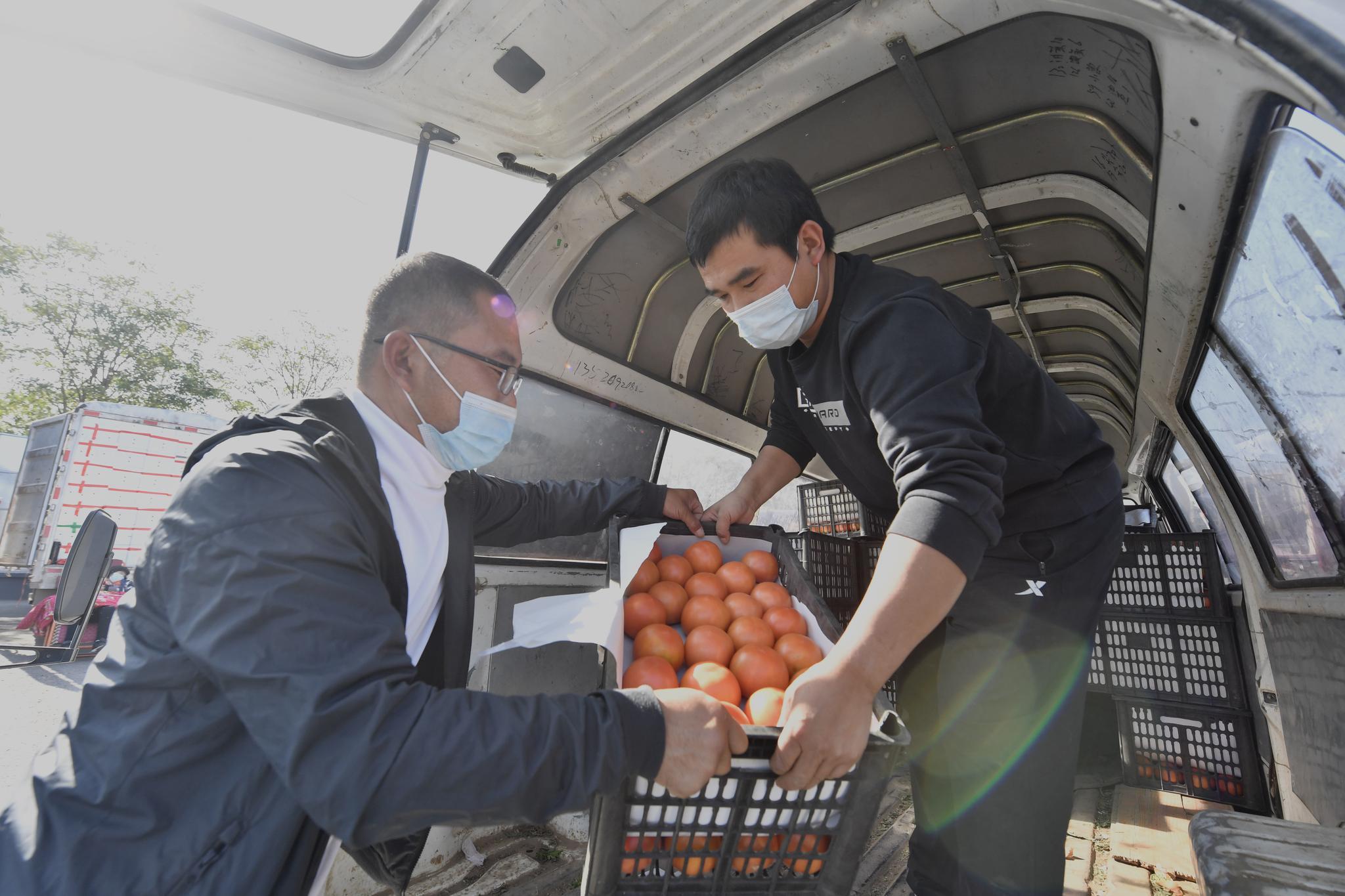 新发地市场蔬菜的日供应量已超过了1.5万吨,充足的供应保障了蔬菜价格的稳中有降。摄影/新京报记者吴宁