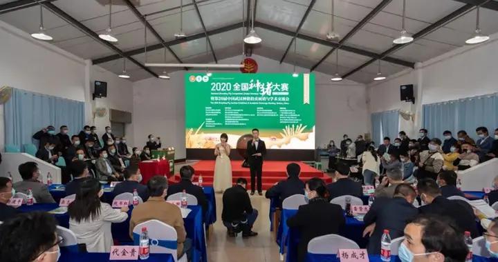 全国种猪大赛(湖北赛区)暨第二十届中国武汉种猪拍卖会在华中农大举行